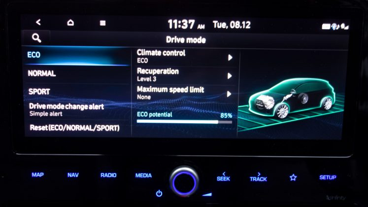 Hyundai Ioniq Electric eco display